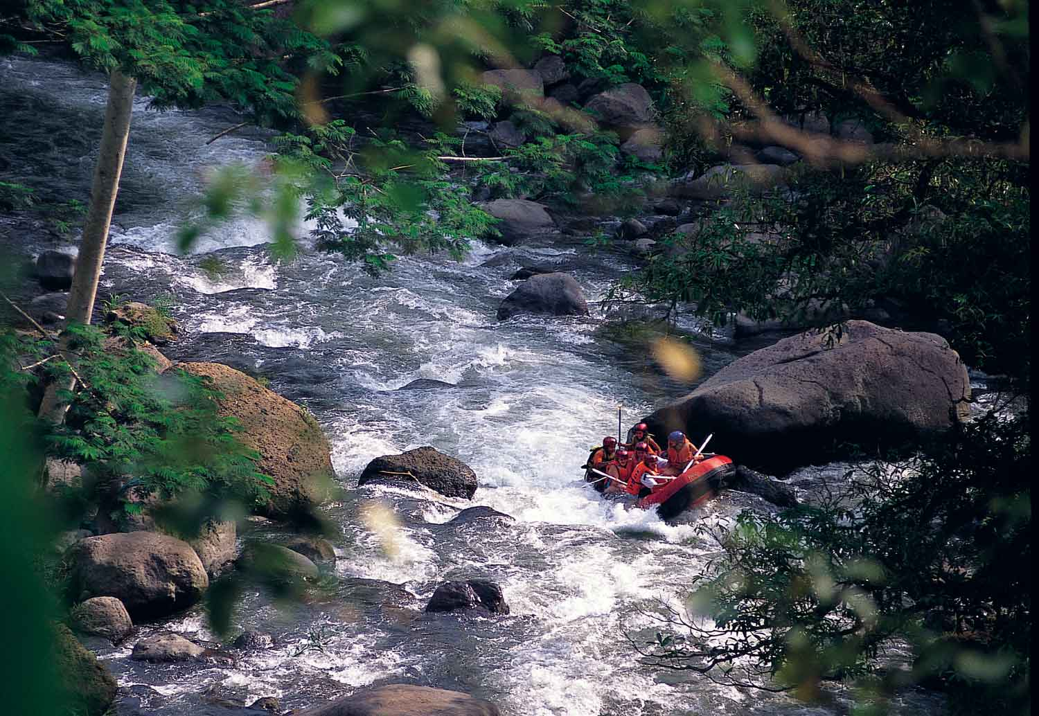 Ayung River Rafting Experience with Alila Ubud